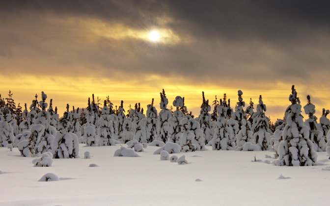 High-resolution desktop wallpaper Wintertime by Datamakarna