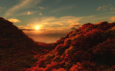 High-resolution desktop wallpaper Morning color by Richard Mohler