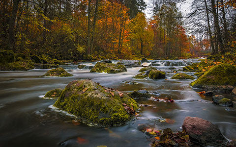 High-resolution desktop wallpaper Colors of Autumn by graphiksi
