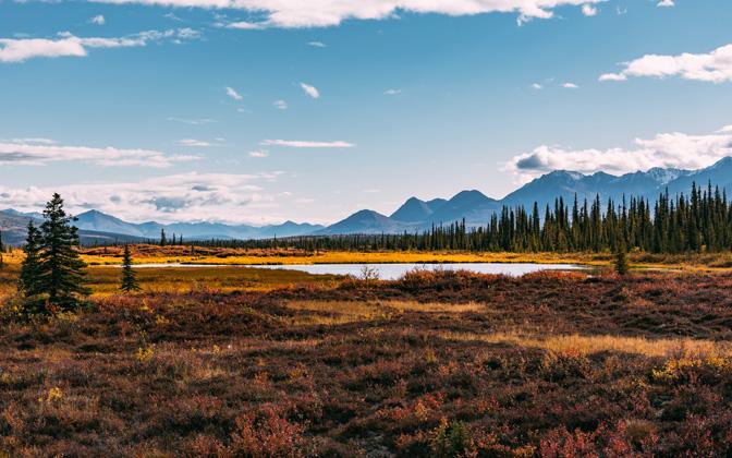 High-resolution desktop wallpaper Autumn in Alaska by Maikel Claassen
