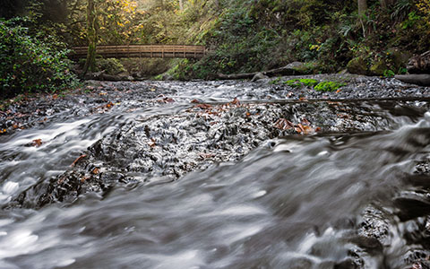 High-resolution desktop wallpaper Oneonta Rapids by Pouchie