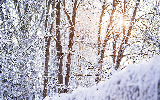High-resolution desktop wallpaper Winter Sunlight by TheWanderingSoul