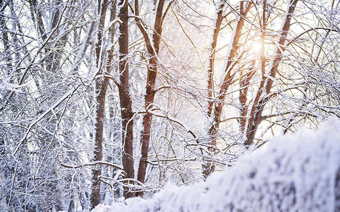 High-resolution desktop wallpaper Winter Sunlight by TheWanderingSoul