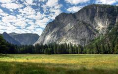Yosemite Meadows wallpaper