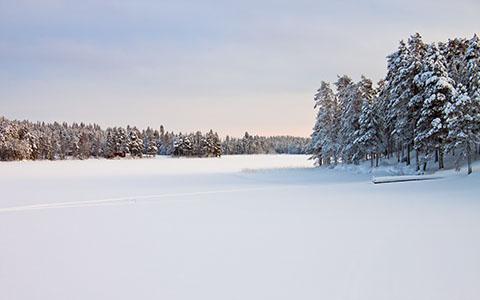 Landscape in Snow wallpaper